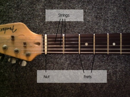 layout of guitar parts